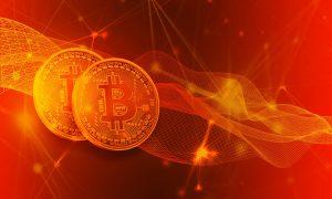 Bitcoin Evolution auf der Website des Ministeriums